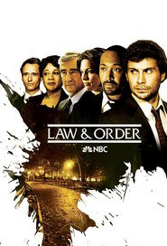 New York : Police Judiciaire Saison 19 Streaming