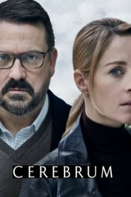 Cerebrum Saison 1 Streaming